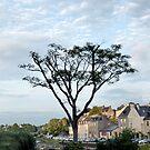 Auray in Brittany by Lynn Bolt