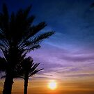 Whispering Palms by Dawn di Donato