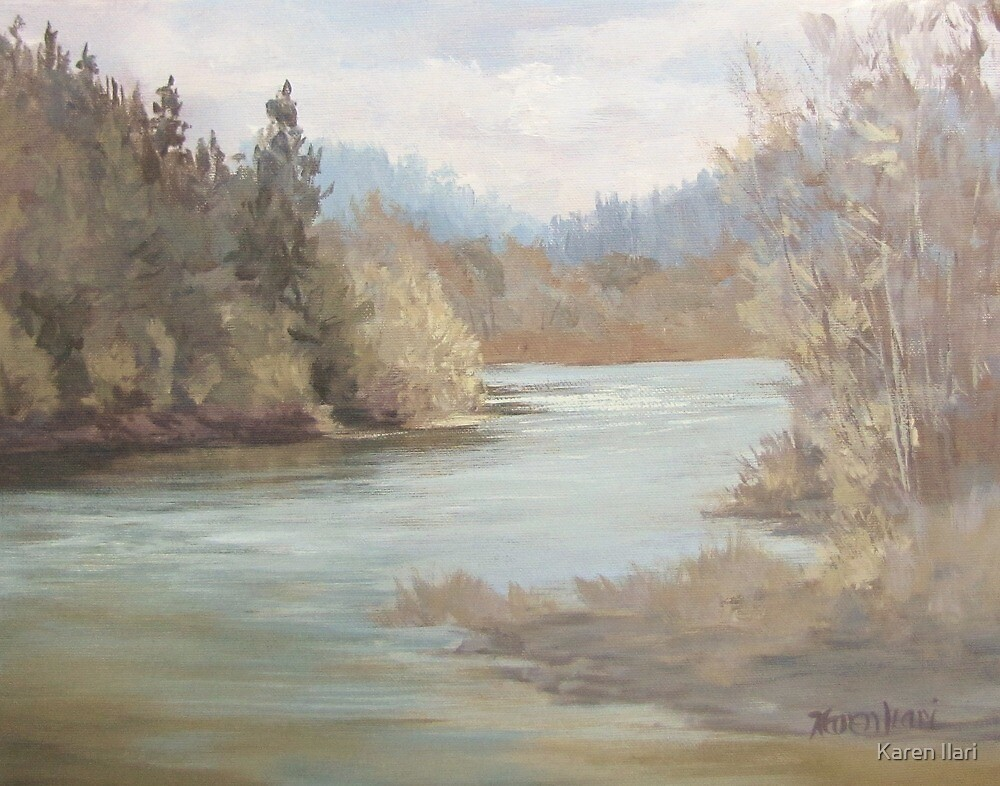 Rainy River by Karen Ilari