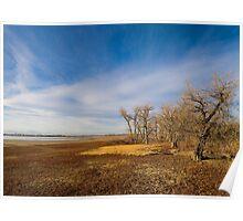 Late Fall at Barr Lake Poster