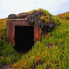 Rusting WWII Bunker by waddleudo