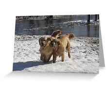 Snow Play Day! Calliope And Lotus Yahoo!!! - 11 Greeting Card