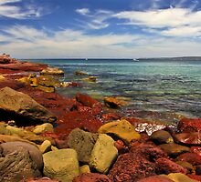 Crimson Tide by SuzieCheree