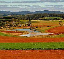 Tas Farmscape by photoj