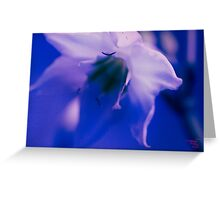 Florance -Blue Greeting Card