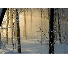Winter Light Rays - Ottawa, Canada. Photographic Print