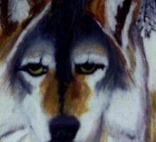 THE RED WOLF by JoAnnHayden