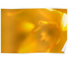 Florance -Golden Poster
