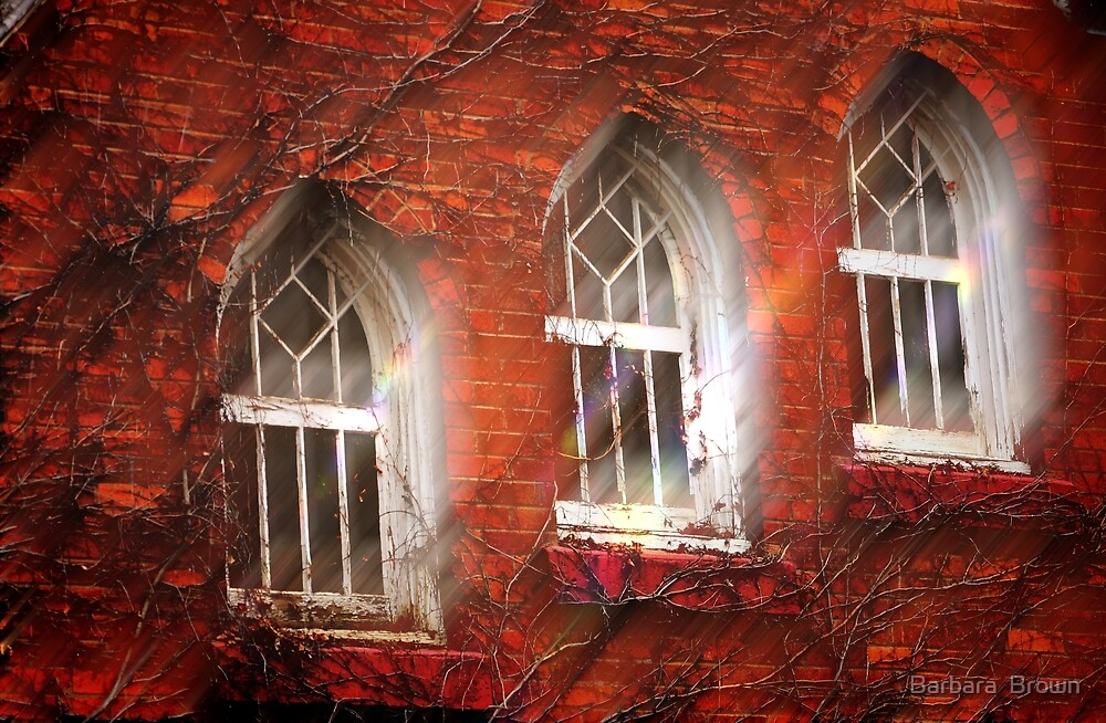 Window Trinity by Barbara  Brown