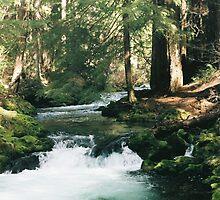 Whitehorse Falls, Umpqua National Forest Oregon by Lanette
