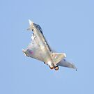 Eurofighter by peaky40