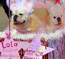 Doggie Parade On the Westbank  by Wanda Raines