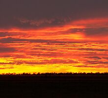 Western Warning * Ilfracombe Queensland by Deon Mackay