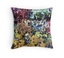 Rainbow Menagerie Throw Pillow