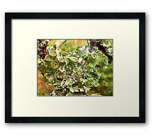 Symbiotic Blossoms Framed Print