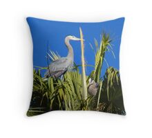 Perfect Nest Building Weather  Throw Pillow