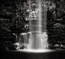 Glencar Waterfall, Ireland by Gerard McGrath