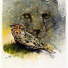 Africa - Cheetah Veldt by Pieter  Zaadstra