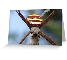 I Love Wrapping Presents! Greeting Card