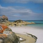 little Waterloo bay  is my  paradise by taariqhassan