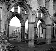 Rievaulx Abbey by yankeehal