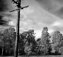 Lost Communication by Nichole Lea