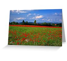 Poppy Field  (Early May) Greeting Card