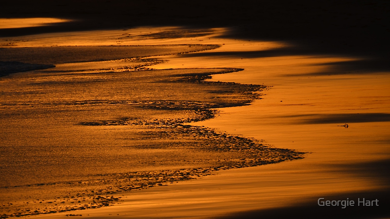 Golden Shores by Georgie Hart
