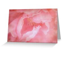 Pretty in Pink ©  Greeting Card