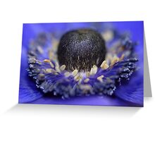 Hello Beauty! Greeting Card