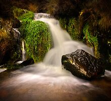 Mountain Stream by Clive  Rees