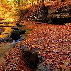 Falling Brook by Benjamin Brauer