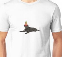 Chocolate Labrador Retriever Birthday Unisex T-Shirt