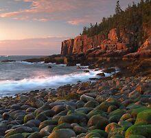 Otter Cliffs At Dawn by Stephen Vecchiotti