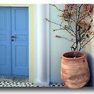 The door to Santorini's inside by John44