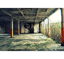 Concrete jungle Photographic Print