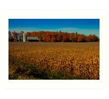 Autumn Corn Field Art Print