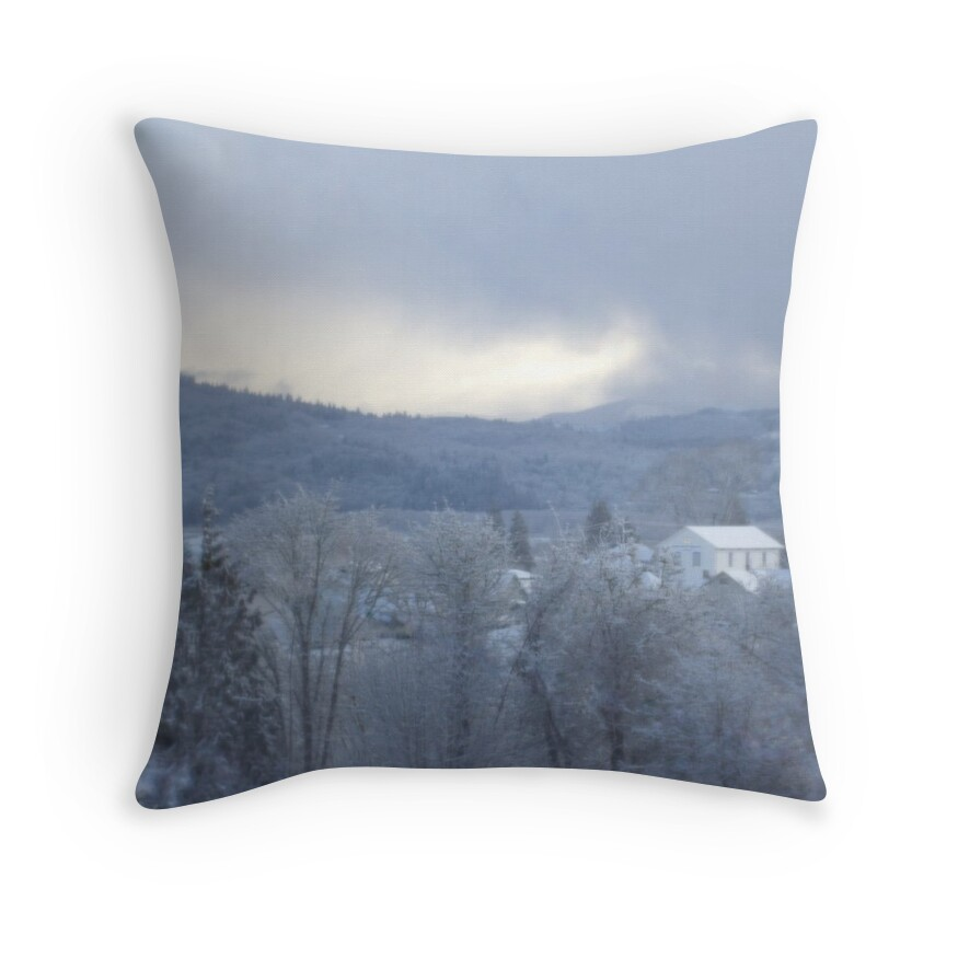 Throw Pillows Meaning :