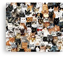 #Catminaproject by Jimiyo Canvas Print