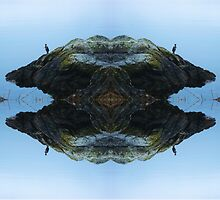 My conscious mind by dcphotoart