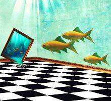 Aquarium by Vanessa Barklay