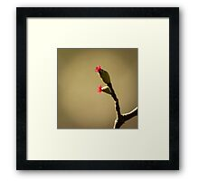 The choice to live ... Framed Print