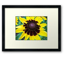 Center of Attention © Framed Print