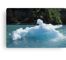 Have A Cold One Canvas Print