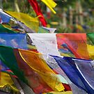 Nepal Prayer Flags by BradBaker