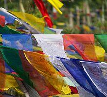 Nepal Prayer Flags by BradBaker