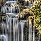Alpine Area Waterfall Kew Gardens by timmburgess