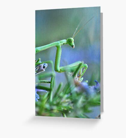 ~  Mantis Girl  ~ Greeting Card