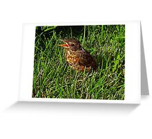 Where's My Mom ? I Want My Mom !! Greeting Card