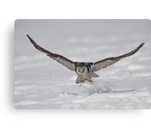 On the Fly...  Canvas Print